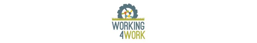 Finanziamento Working4work